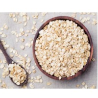 UAE Oat Suppliers, Manufacturers, Wholesalers and Traders