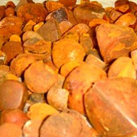 Quality Fine Cow/Cattle/Ox Gallstones