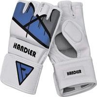 MMA Gloves Grappling Martial Arts Punching Bag