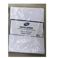 305x405mm Peel And Seal Envelope 100G