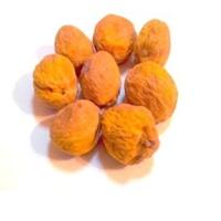 Apricot - Kandak ( with bone)