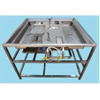 SS Poultry Gizzard Peeling Machine