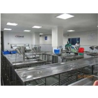 SS Shrimp Packaging Machine