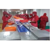 SS Shrimp Shell Peeling Conveyor