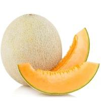 Melon (Orange)