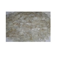 Dried Fish Scale