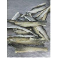 Dried Basa Fish Skin/ Pangasius Skin