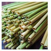 Grass Straws