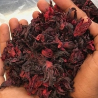 Hibiscus Flower - Best Price From Vietnam