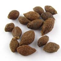 Malva Nut