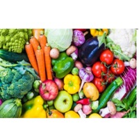 Fresh Vegetables : Manufacturers, Suppliers, Wholesalers and