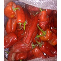Very Hot Pepper(Capsicum)