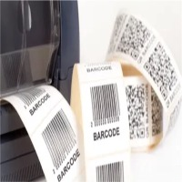Irect Thermal And Thermal Transfer Blank Labels