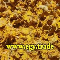 Verbascum Dry Flower