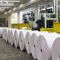 Thermal Paper Or Paper Roll