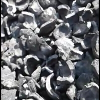 Candle Nut / Kukui Nut Shell Charcoal