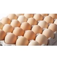 Farm Fresh Chicken Table Brown and White Eggs