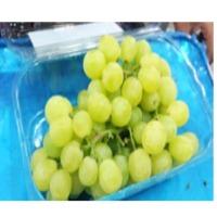 Egyptian Fresh Grapes