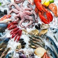 Quatity Frozen Seafoods