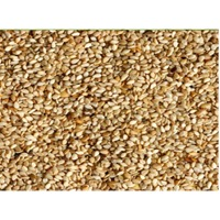 USA Sesame Seeds Suppliers, Manufacturers, Wholesalers and Traders