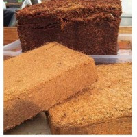 Compressed Coco Peat Blocks