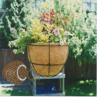 Decorative Garden Pot