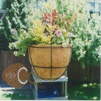 Decorative Garden Pot