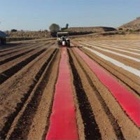 Red Mulch Films