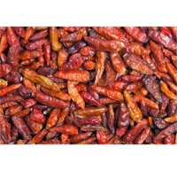Dried Red Chilli Pepper