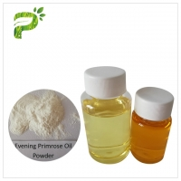 Evening Primrose Oil Powder