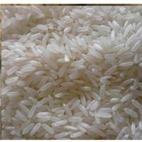 IRRI-6 Rice