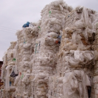 LDPE Film Clear Bales Scrap - Waste