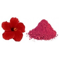 Hibiscus Hair Wash Powder