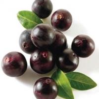 Dark Balsamic Vinegar Acai Berry