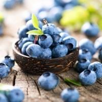 Dark Balsamic Vinegar Blueberry