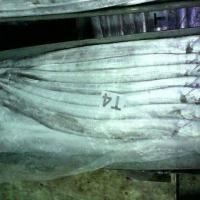 Indonesian Frozen Ribbonfish