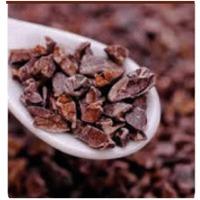 Organic Certified Criollo Cacao Nibs