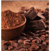 Organic Certified Criollo Cacao Powder