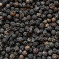 Sri Lankan Pepper Suppliers, Manufacturers, Wholesalers and