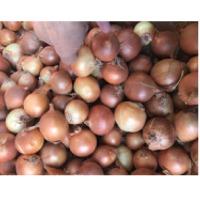 Asorting Onion