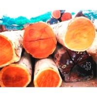 title='Ebony Wood Logs'