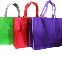 Spunbond Shopping Bag