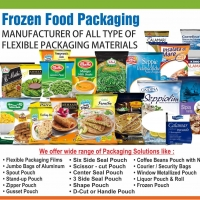 Frozen Food Pouch