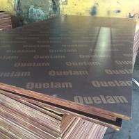Film Coated Plywood