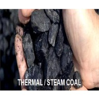 Steam/Thermal Coal