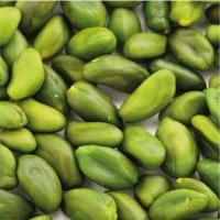 Pistachio Green Kernel