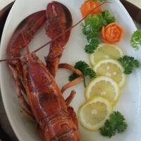 Frozen Canadian Lobster