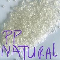 Pp Natural