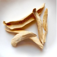 Dry Mango (Amchoor)