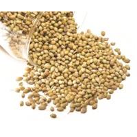 Coriander Seed (Dhaniya)